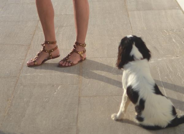gladiator studded brown sandals