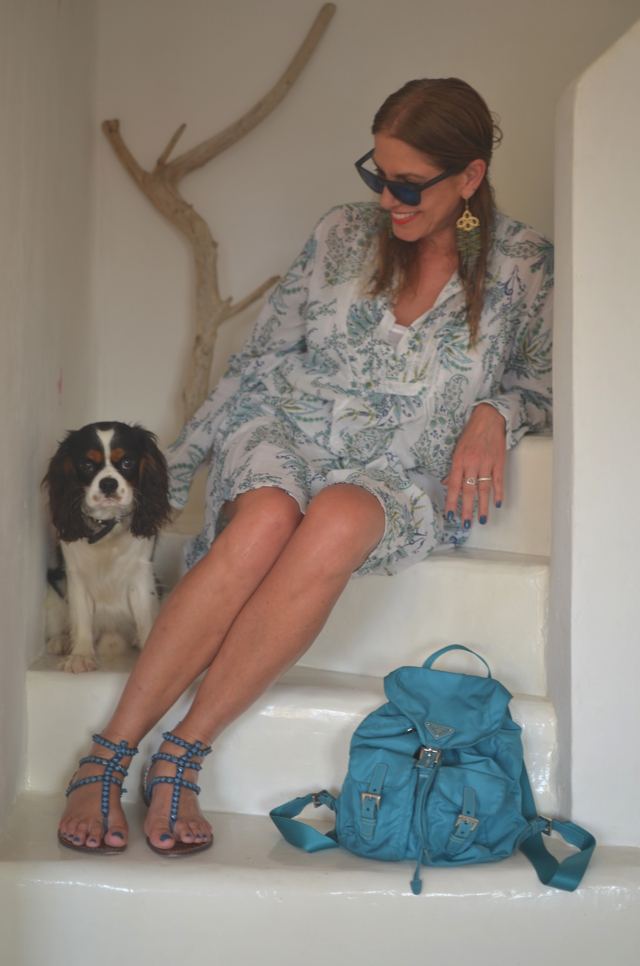 Tzia (Kea) Paisley Shirt dress and cavalier spaniel