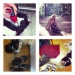 Instagram September 2014 Recap