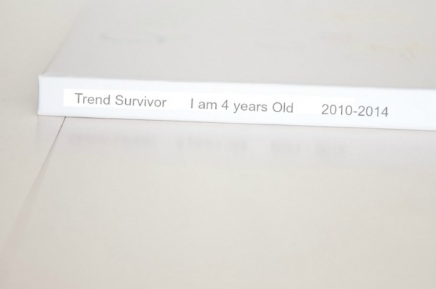 Lifestyle blogs TrendSurvivor Blog birthday