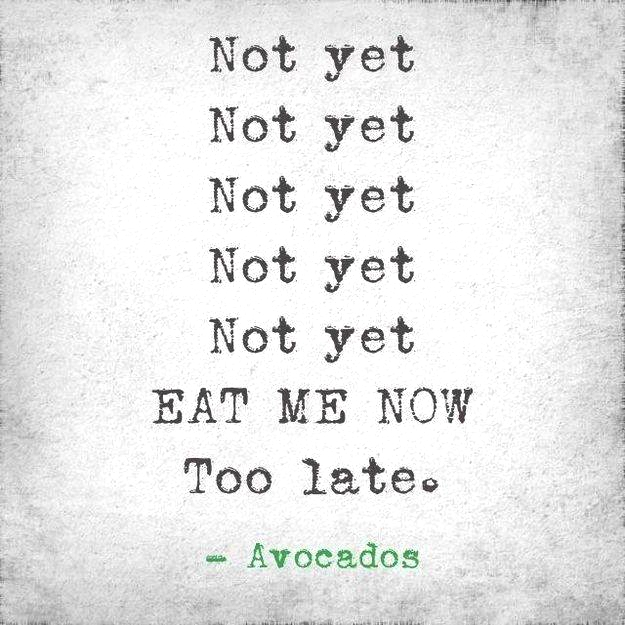 Avocados quote