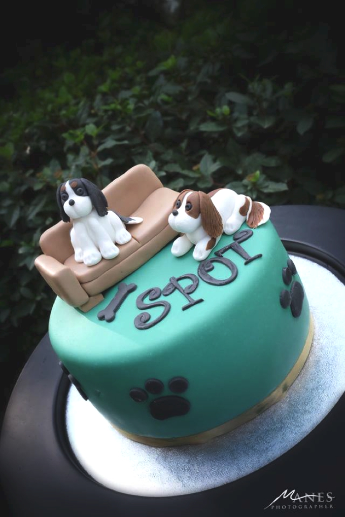 Cavalier King Charles Birthday cake