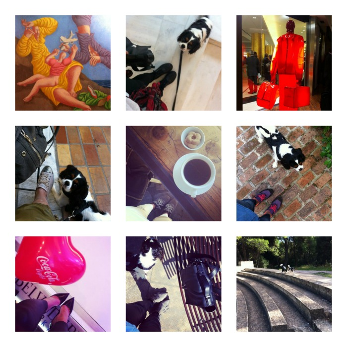 October Instagram recap