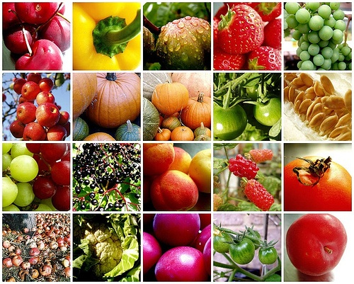 Fruits and Vegetables in Season | The Shopping List