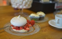 Pavlov's Lab Christmas Spirit | A mini Pavlova Recipe