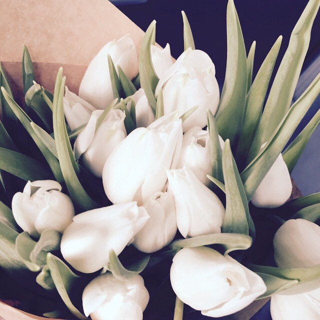 Love white tulips?