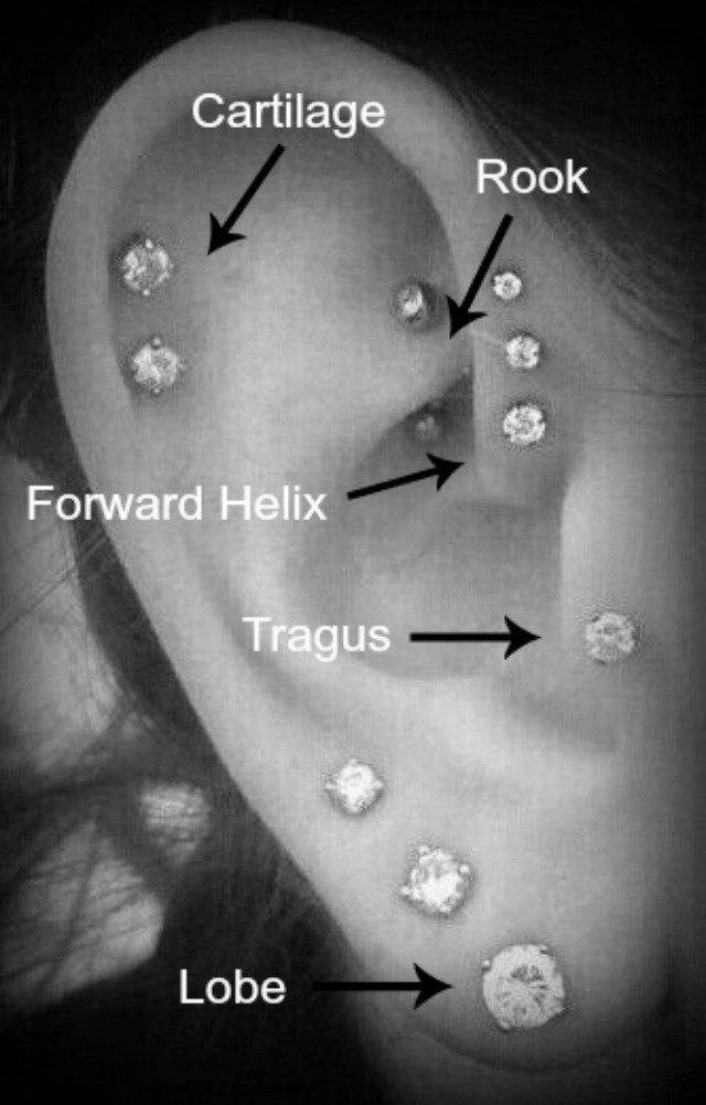 Ear Piercing terminology b/w