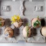 Fresh Easter Egg Decorating Ideas   Eggs with Flowers