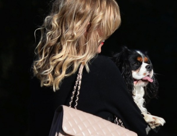 Chanel beige bag and dog Spot