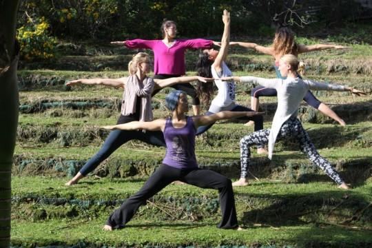 AllSix_Warrior Yoga position