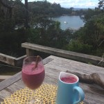 Superfood Recipes | Mixed Berries Smoothie from NZ
