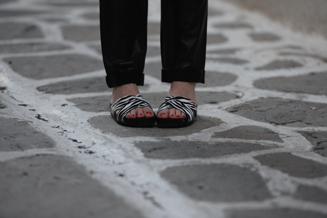 ugly shoes, Vagabond zebra