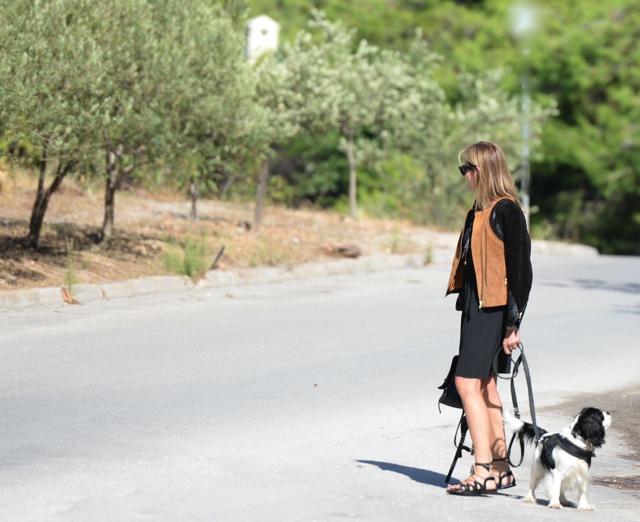 Camel leather jacket look Dog Spot