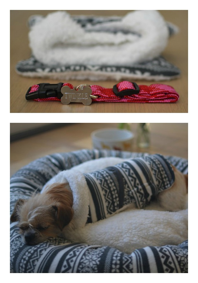 Twinkle dog sleeping bed