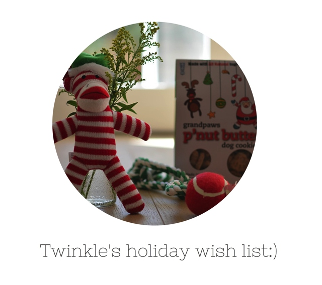 Twinkle's holiday wish list