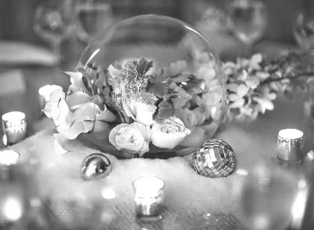 festive-silver-white