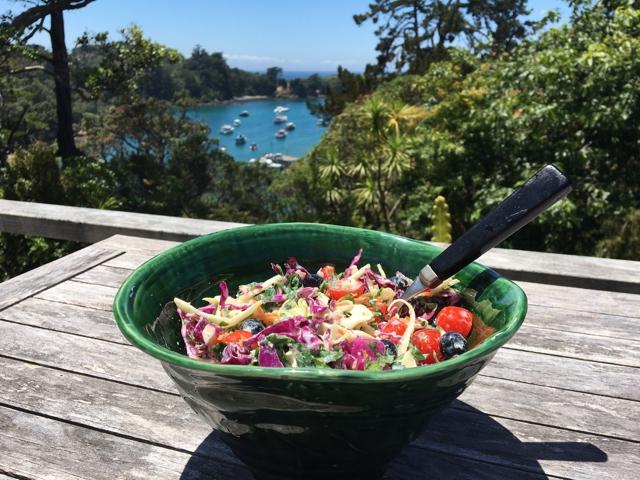 probiotics fresh Salad