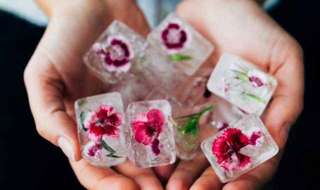 rose flower ice cubes