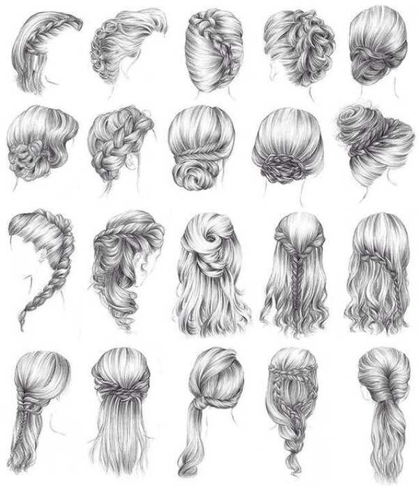 braids illustratio hair