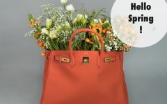 Hello Spring Kelly bag